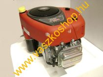 Briggs & Stratton TA/L8 A benzines motor