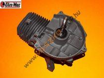 Motor Oleo-Mac Sparta 25/26/250